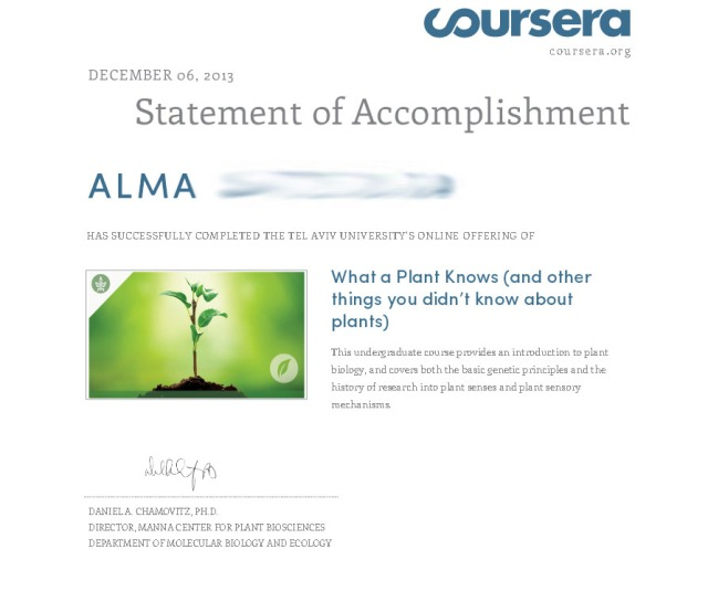 statement accomplishment plant