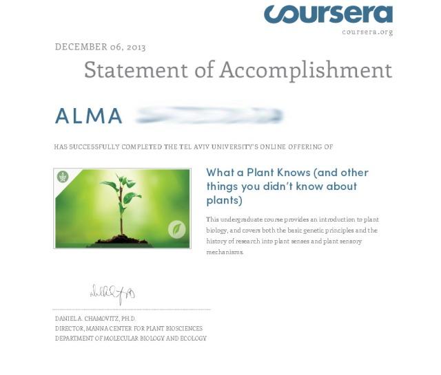 statement accomplishment plant